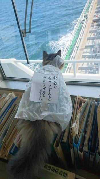 san_20161003_oshiokineko01