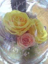 あゆみさんからお花