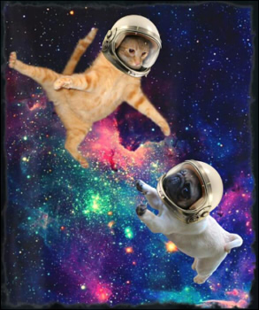 Cute Space Cat vs Space Dog Galaxy Epic Fight In Outer Space Tシャツ