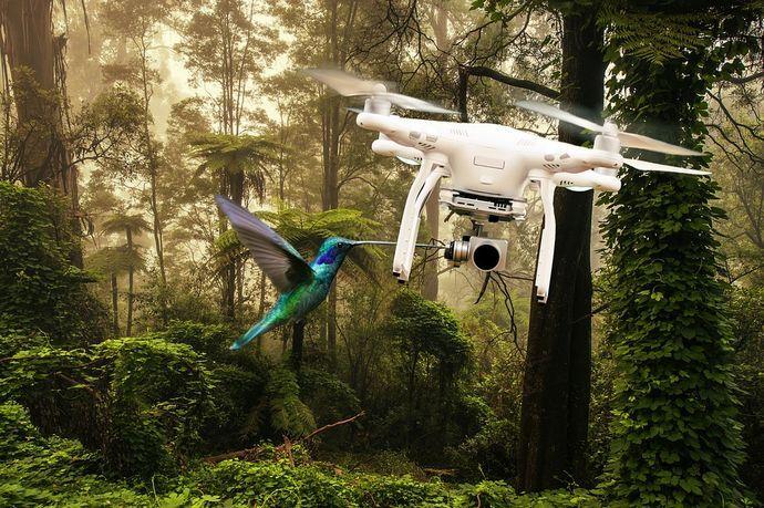 drone-3157957_960_720