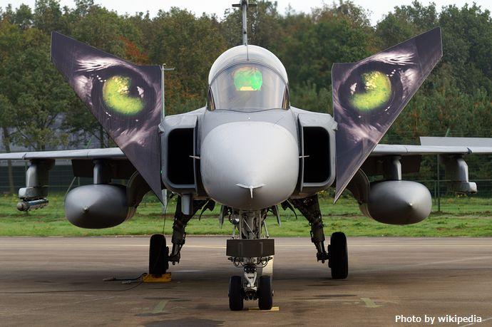 Saab_JAS-39_Gripen_(Czech_Air_Force)_(5116809729)