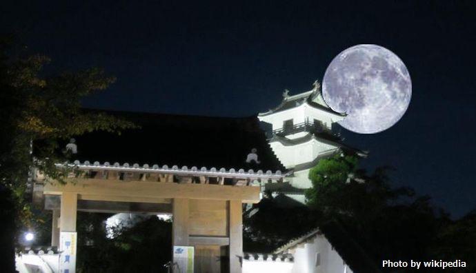 掛川城と月