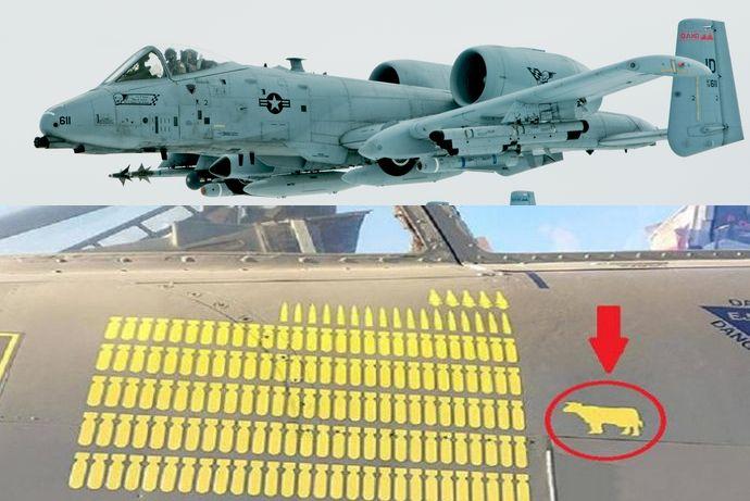 A-10_Thunderbolt_in_flight