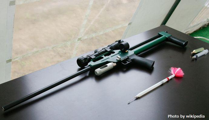 Air_rifle_with_tranquilliser_dart