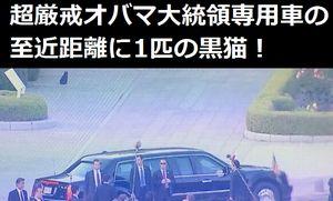 超厳戒警備をしいたオバマ大統領専用車の至近距離に1匹の黒猫…「爆弾を仕掛けていた
