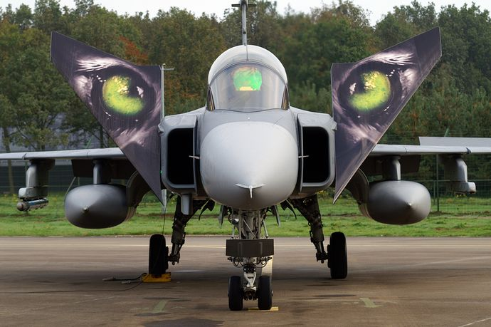 Saab_JAS-39_Gripen_(Czech_Air_Force)_(5116809729)