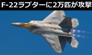米軍の最新鋭ステルス戦闘機「F-22ラプター」に2万匹のミツバチ群がる…絶滅危機