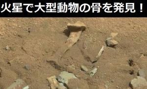 火星探査機が大型動物の大腿骨を発見(画像あり)!
