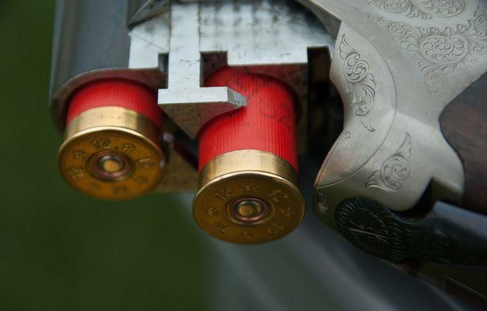 gun-1761235_1920