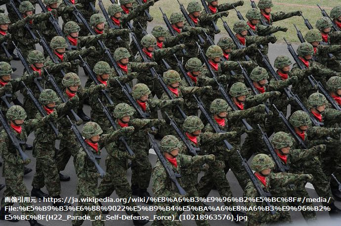 平成22年度観閲式(H22_Parade_of_Self-Defense_Force)_(10218963576)