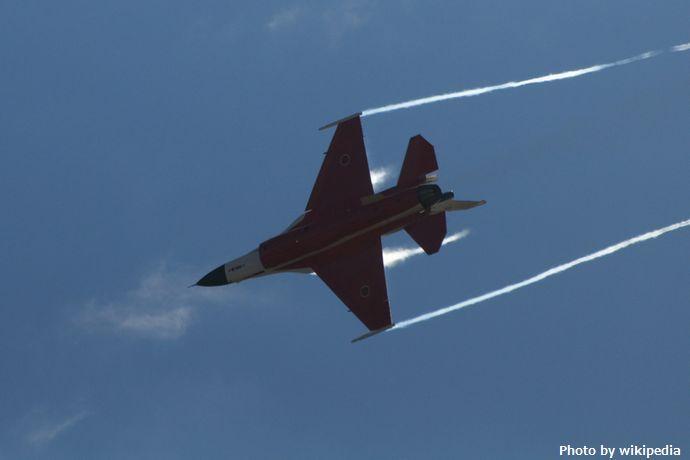 F-2_@_Gifu_2008岐阜基地航空祭_(3103520581)