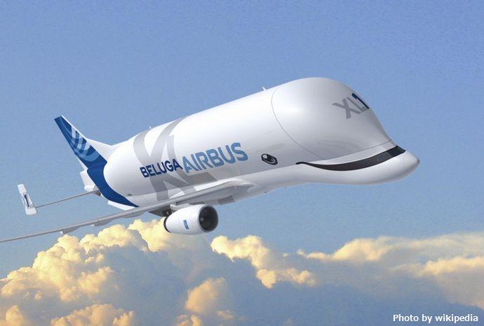 BelugaXL-1