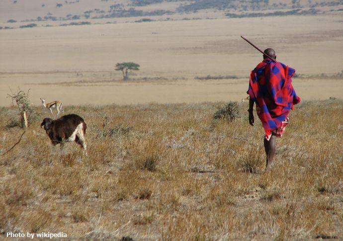 Maasai_man,_Eastern_Serengeti,_October_2006