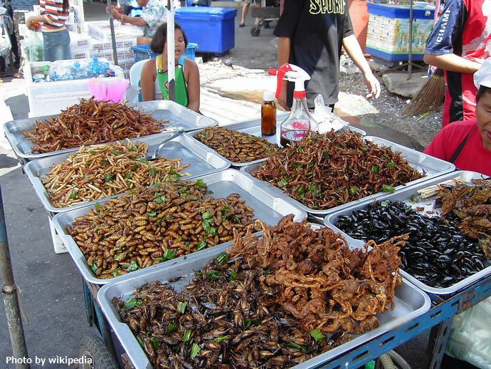 1280px-Insect_food_stall