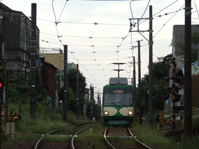 TKK_Setagaya_Line