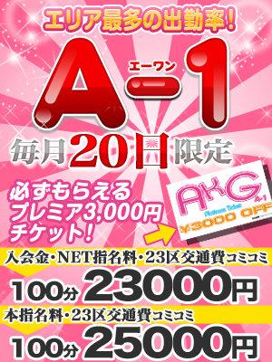 A-1_300-400