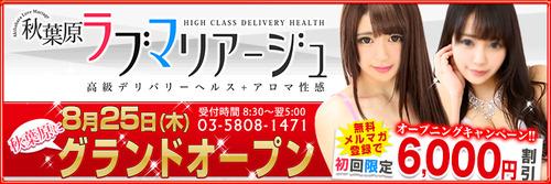 akilove750-250