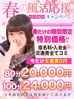 480-640_春の風活_特別価格秋コス