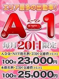 A-1_300-400_1