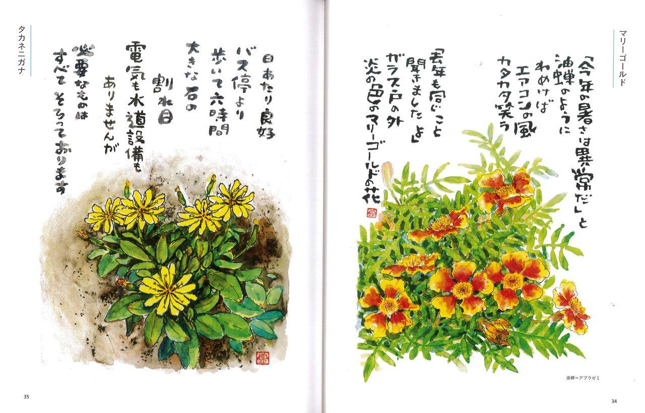 星野富弘の画像 p1_33