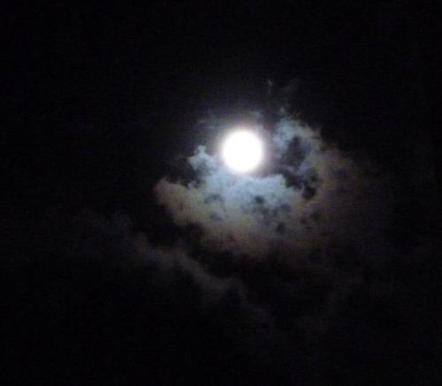 2014.8.11満月