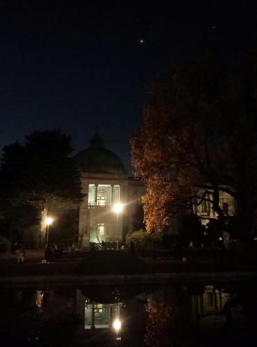 表慶館ライトアップ