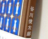 谷川俊太郎さん詩集 『あたしとあなた』