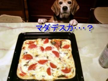 手作りピザ(1)