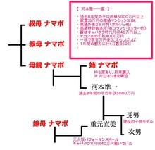 007baikokudo_koumotozyunichi2