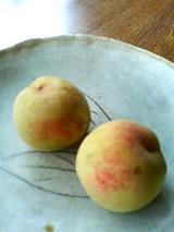 cotanの桃