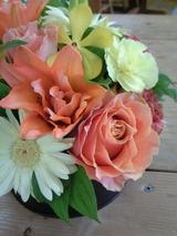 お祝いの花 3