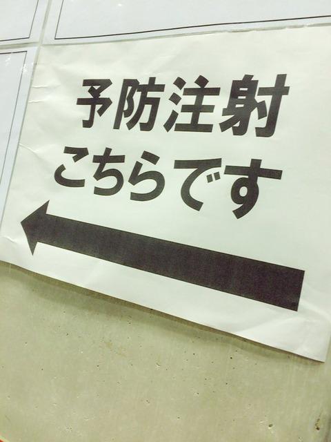 33f7f031