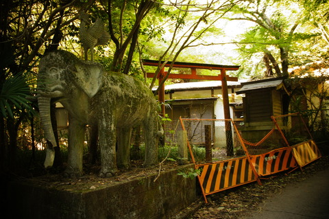 象の像の廃神社