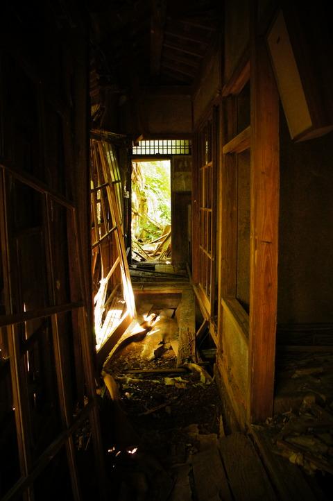 高田牧場065
