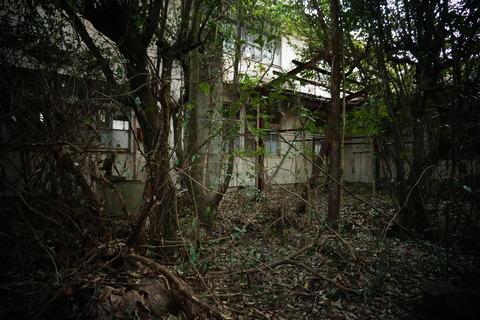 古市医院061