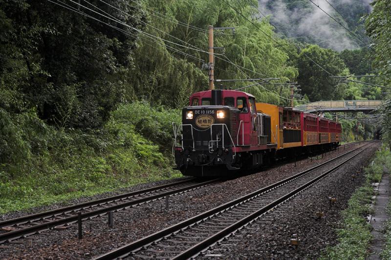 竹林など・・嵯峨嵐山で3_s.jpg
