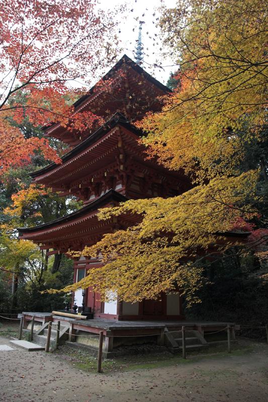 浄瑠璃寺4_s.jpg