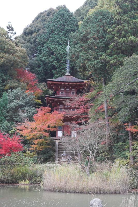 浄瑠璃寺3_s.jpg