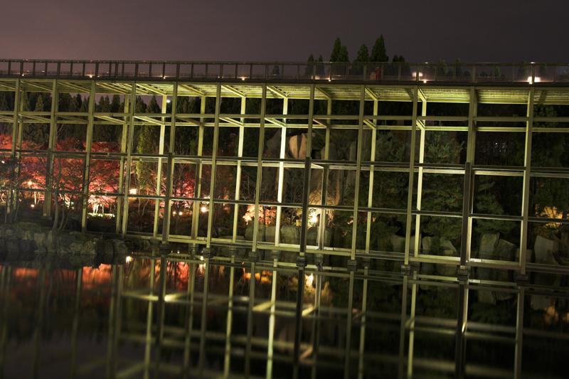けいはんな記念公園_紅葉ライトアップ1_s.jpg