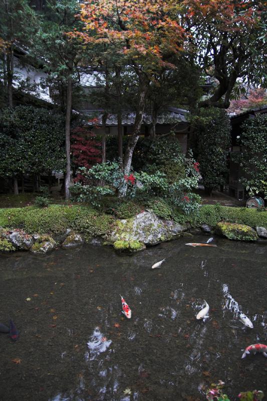 京都大原寂光院8_s.jpg