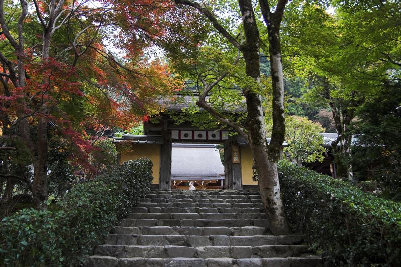 京都大原寂光院2A_s.jpg