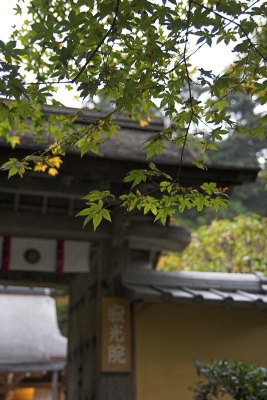 京都大原寂光院3_s.jpg