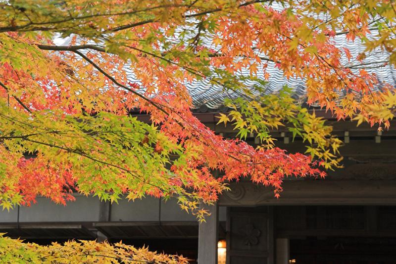京都大原三千院4_s.jpg