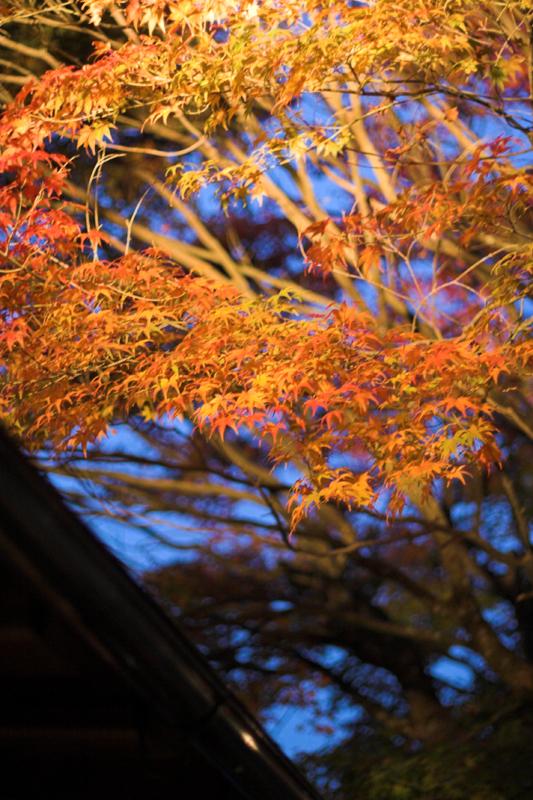 京都大原寂光院12_s.jpg