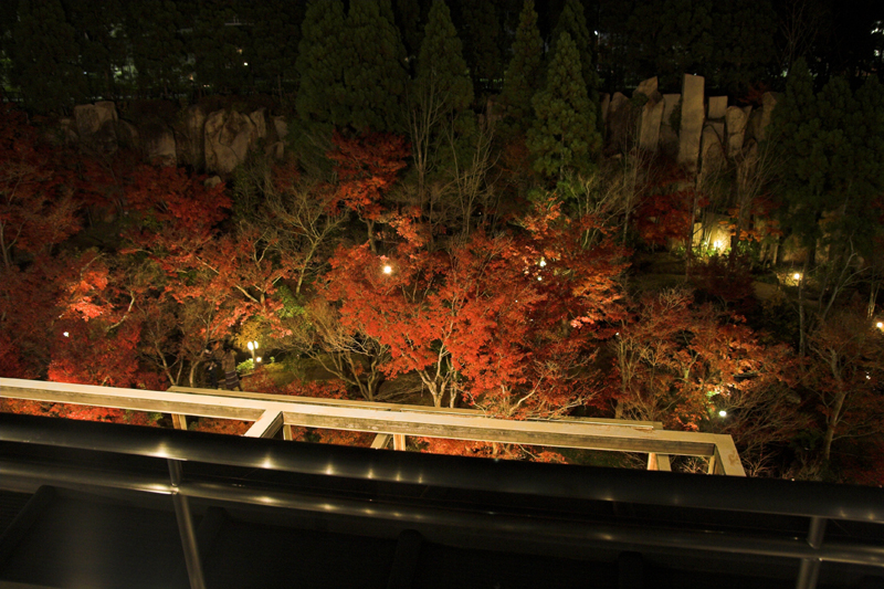 けいはんな記念公園_紅葉ライトアップ5_s.jpg