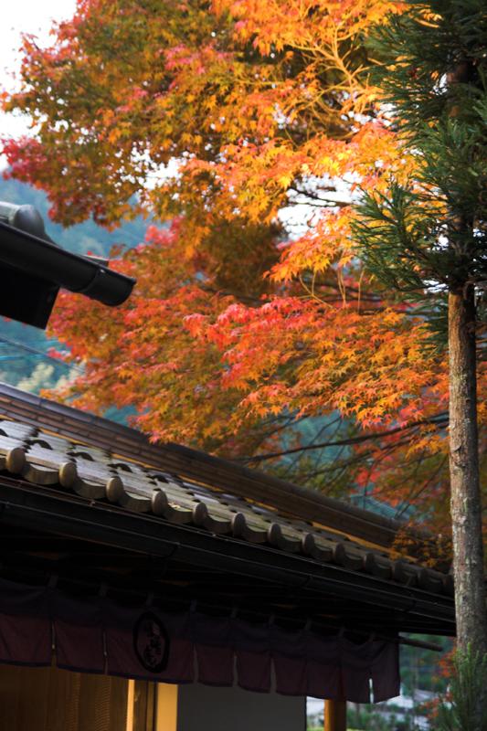 京都大原寂光院1_s.jpg