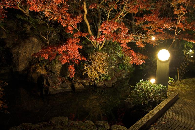 けいはんな記念公園_紅葉ライトアップ8_s.jpg