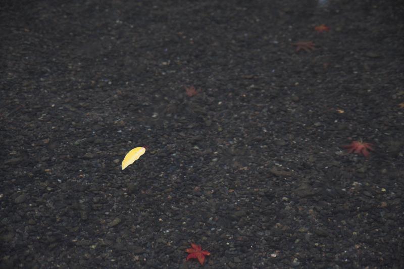 京都大原寂光院5_s.jpg
