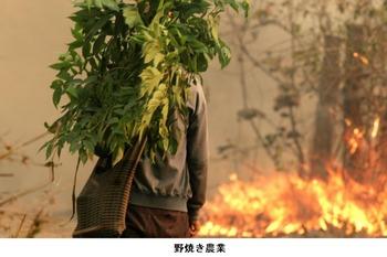 空気汚染2