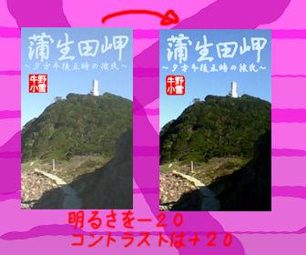 蒲生田岬 表紙案比較